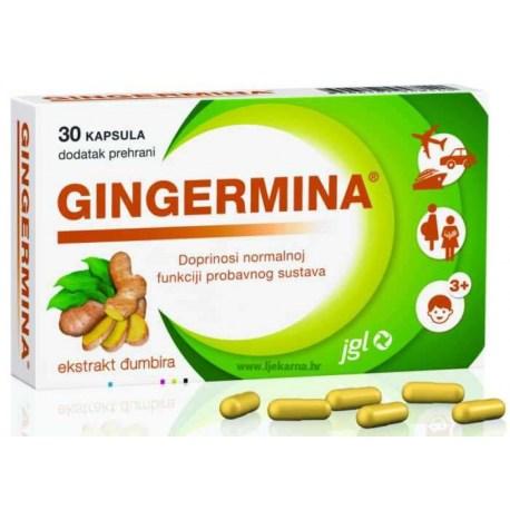 Gingermina kapsule doprinose normalnoj funkciji probavnog sustava